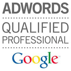 addwords-professional-in-udaipur