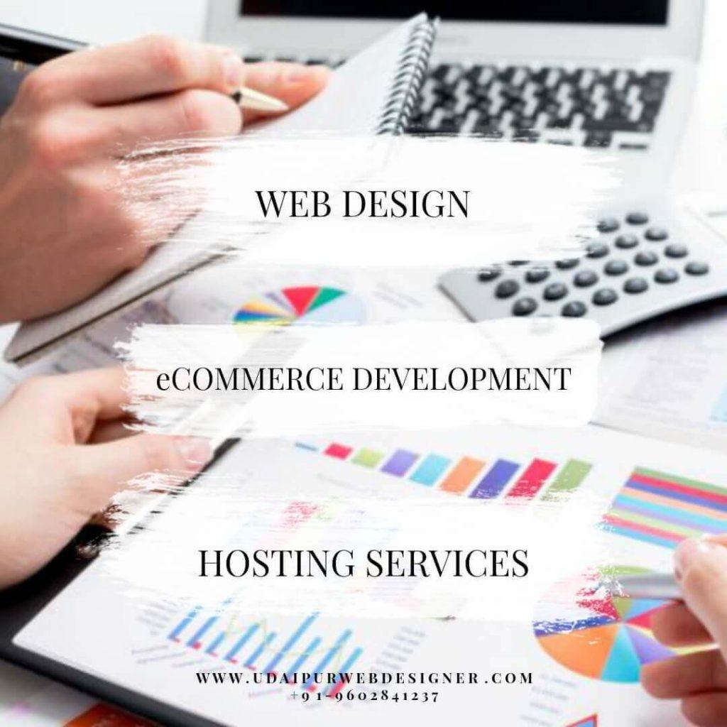 udaipur-web-designer-udaipur-rajasthan