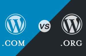 difference between wordpress com vs wordpress org